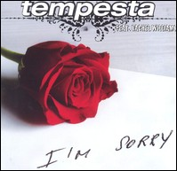 I'm Sorry (Radio Edit)